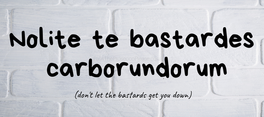 Nolite te bastardes carborundorum don't let the bastards get you down chronic illness flare spoonie #chronicillness #chroniclife